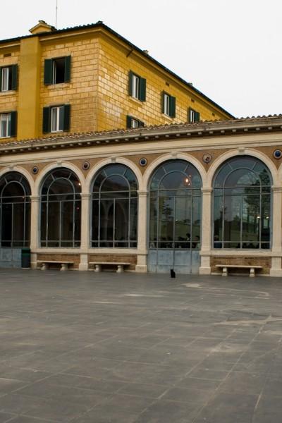 Katze und die Vatikanischen Museen