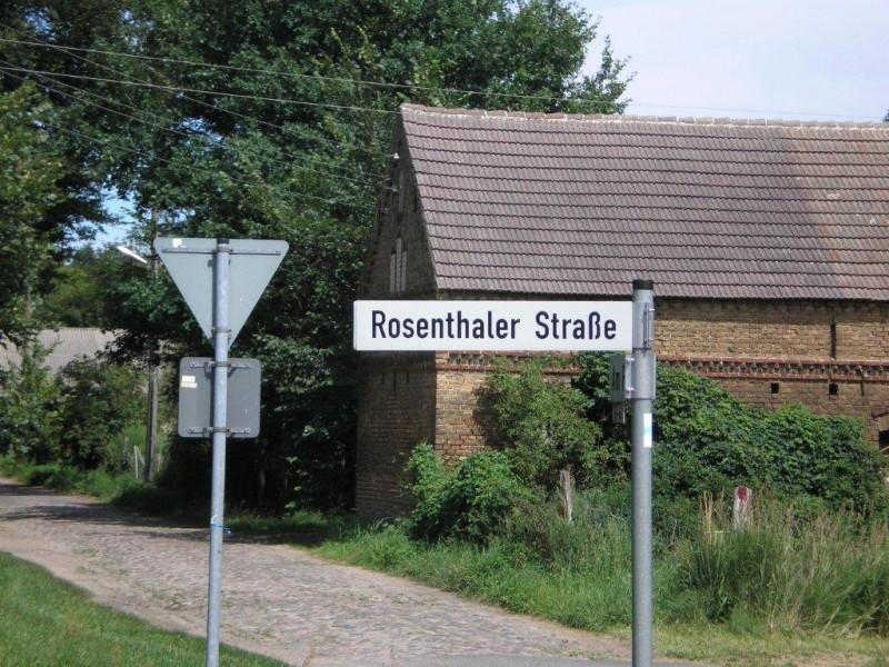 Rosenthaler Danke Torert, du Foto-Graf!