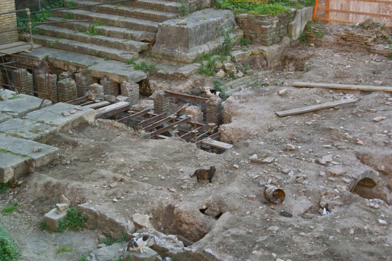 Katzen im antiken Rom