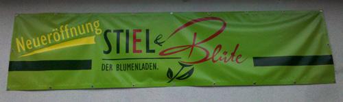 Stiel & Blüte in Bautzen